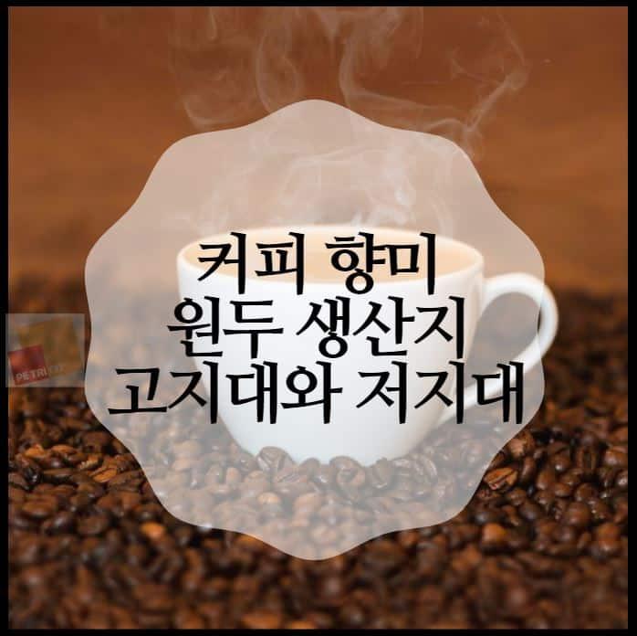 커피 향미