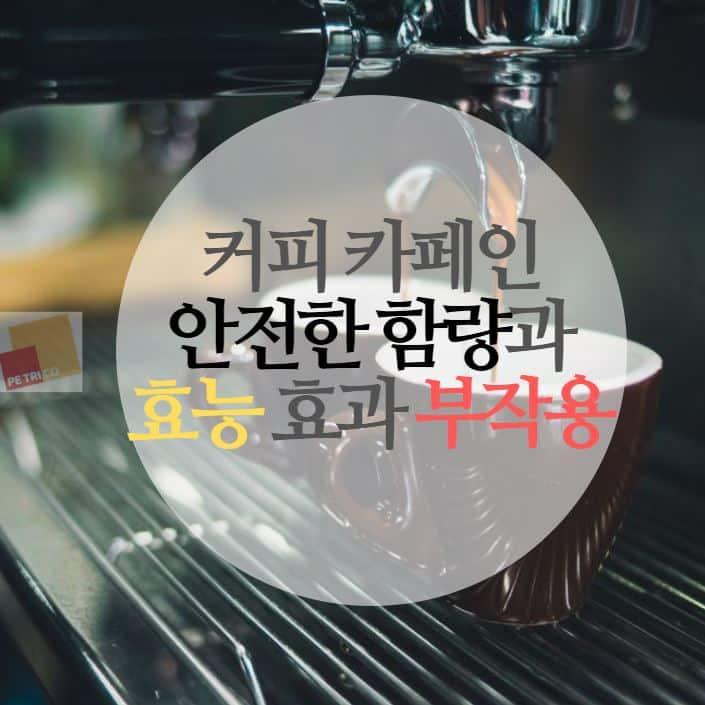 커피 카페인 함량